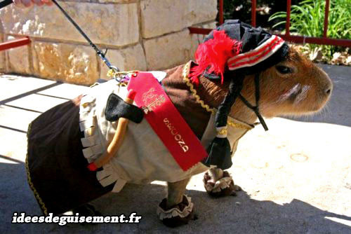idees de deguisement theme soiree deguisee western country