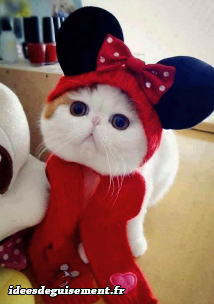 Déguisement chat Minnie Mouse