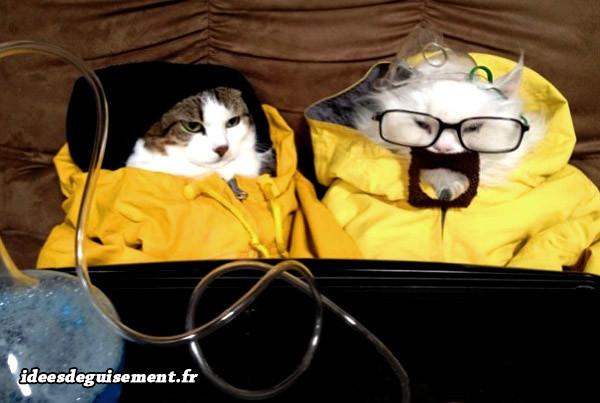 Déguisement de Walter White et Jessie Pinkman de Breaking Bad pour chats