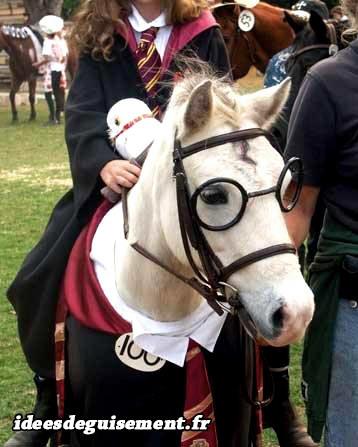 cheval harry potter et hermione granger idees originales deguisement costume cosplay pour animaux