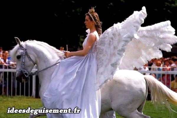 Déguisement de cheval blanc ailé pégase et princesse