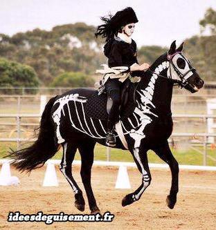 cheval noir squelette blanc mort idees originales deguisement costume et cosplay pour animaux