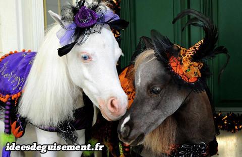 chevaux poneys halloween idees originales deguisement costume et cosplay pour animaux