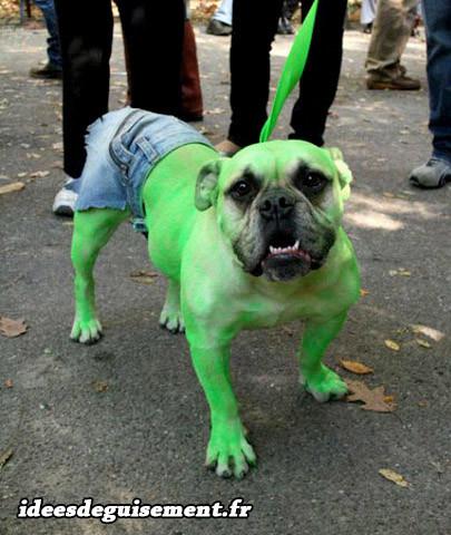 Déguisement chien hulk vert