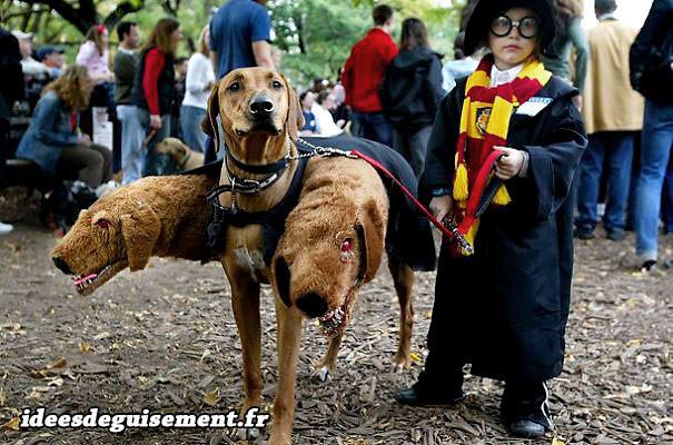 Costume du chien à trois tête et sorcier
