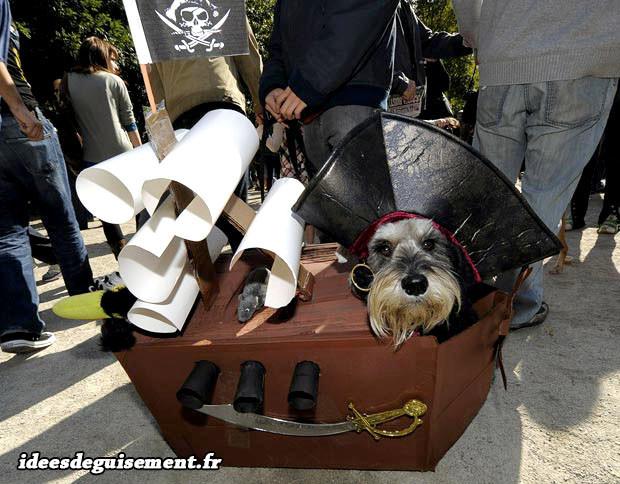 Déguisement de bateau pirate
