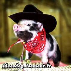 Costume de cochon en cow-boy