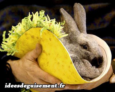 Déguisement de tacos jaune Mexicain
