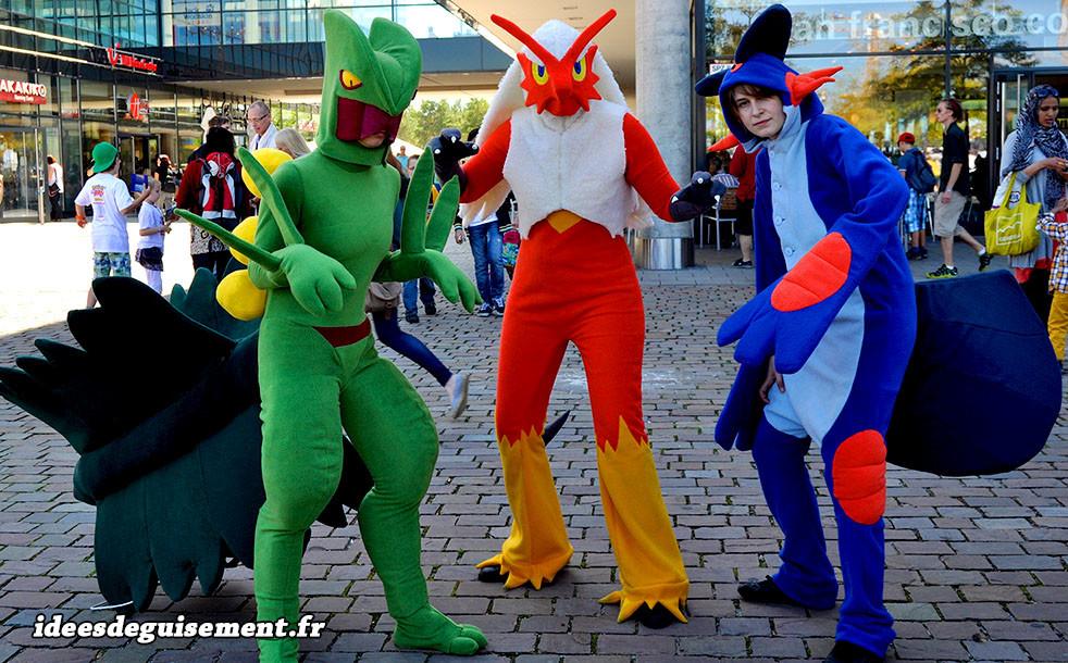 Déguisements en trio des Pokémon Jungko Braségali et Laggron