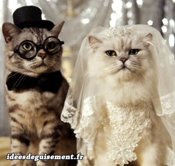 Déguisements chats mariés
