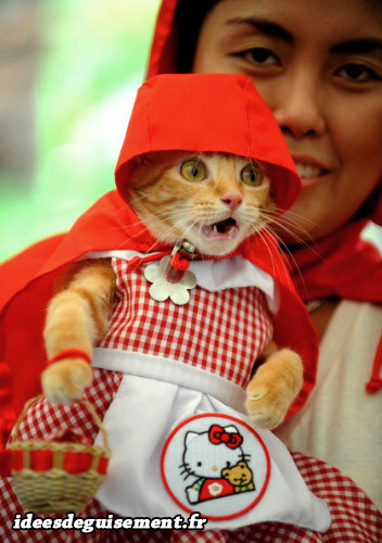 Déguisement chat petit chaperon rouge hello Kitty