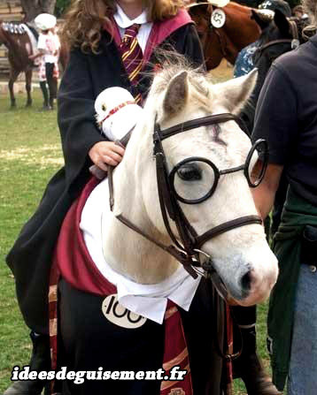 Déguisement de poney Harry Potter