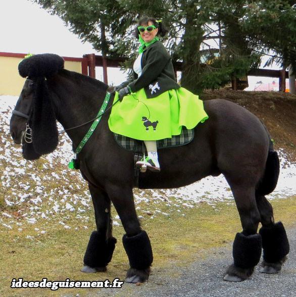 Déguisement de cheval caniche noir Irlande