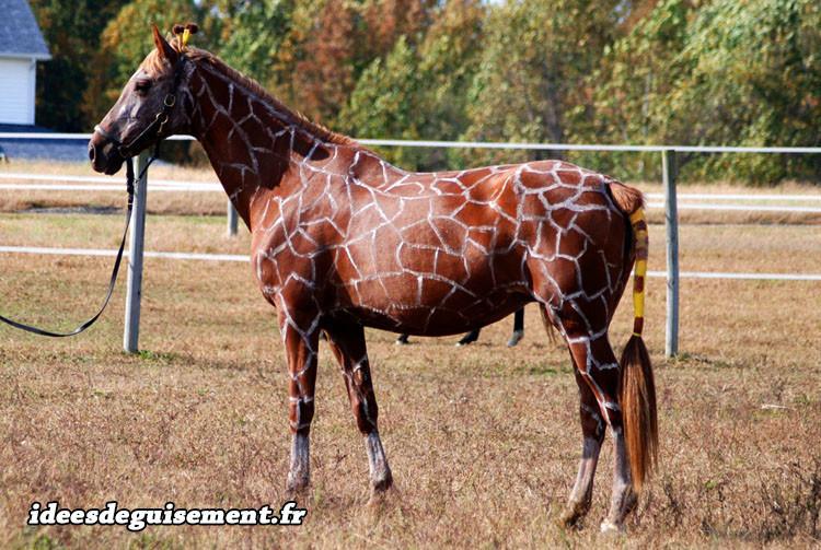 Déguisement de cheval girafe