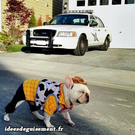 Déguisement de sheriff bulldog