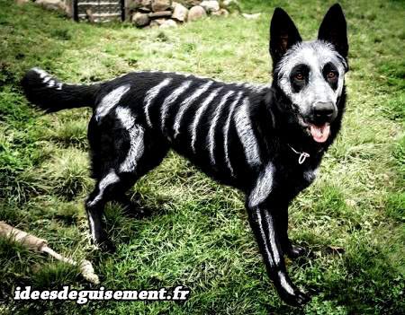 Déguisement chien peint en squelette blanc