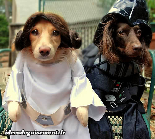 Déguisements de Leia et Dark Vador