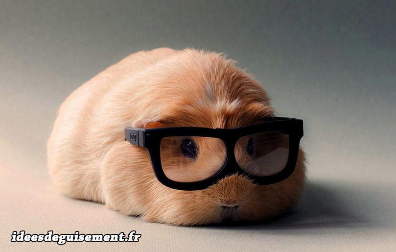 Déguisement de cochon d'inde avec paide de lunette