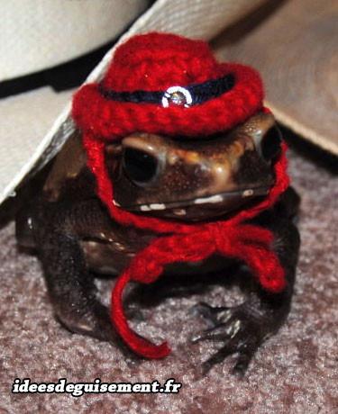 Déguisement de crapeau chapeau rouge en laine