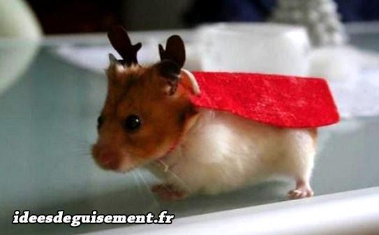 Déguisement de Rennes du Père Noël