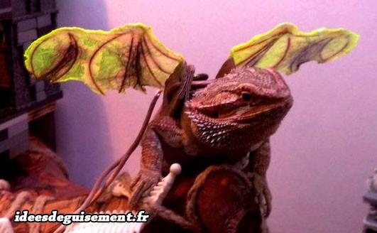 Déguisement d'iguane dragon drogon halloween