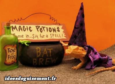 Déguisement d'iguane lézard mafe magicien potions magiques