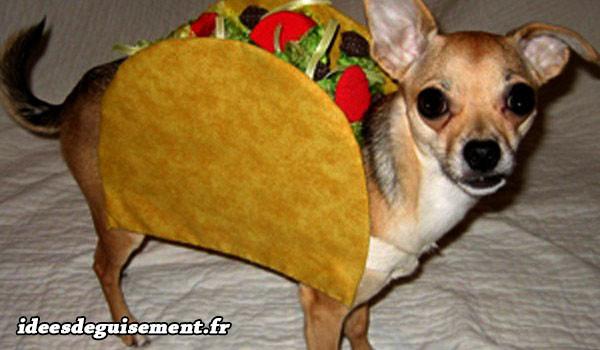 Déguisement de Taco Mexicain