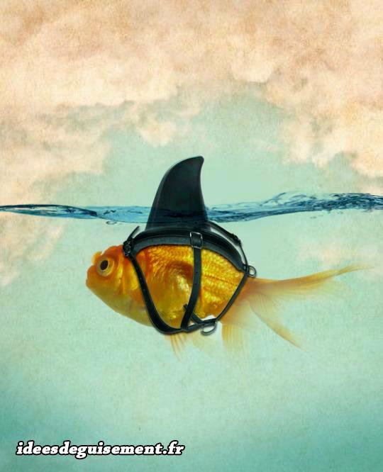 Déguisement drôle de poisson requin