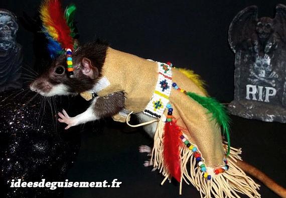 Costume de rat Améridien