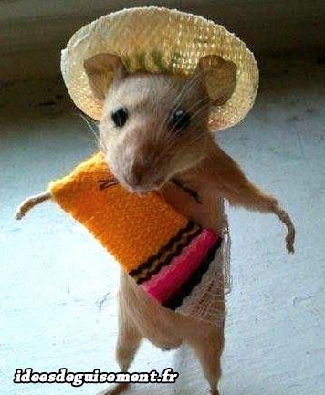 Déguisement de Speedy Gonzales du Mexique