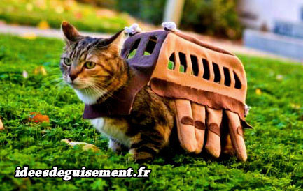 Déguisement du Chat-bus